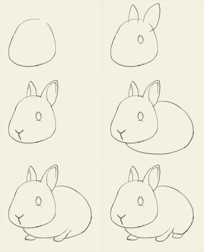 for this bunny we drew together in steps i didnt give the girls the full handout until the end i think i have mentioned this before that i find that