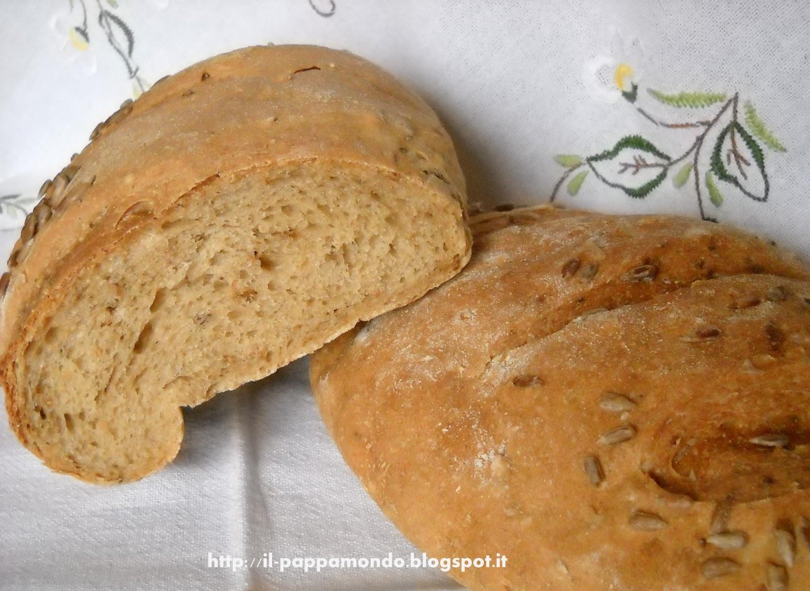 pane ai cereali con semi di girasole