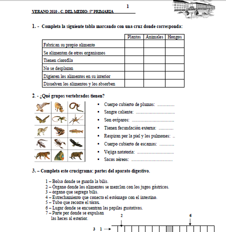 cuaderno de ejercicios en ingles pdf