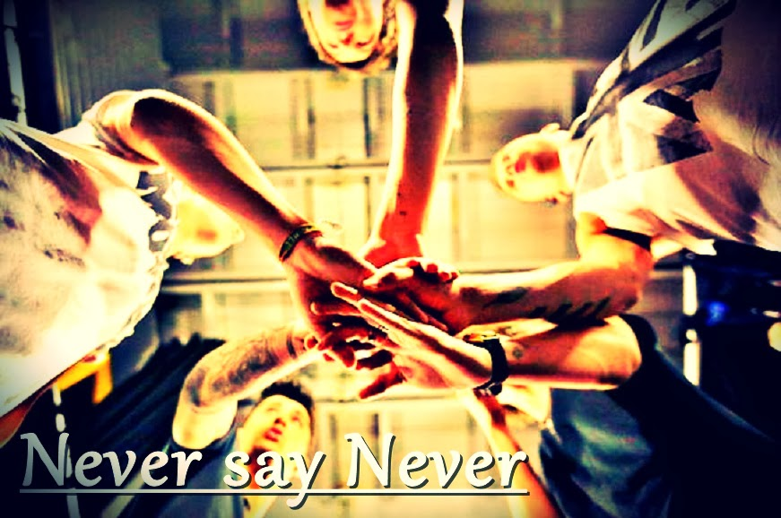Never say Never  - Blog o One direction