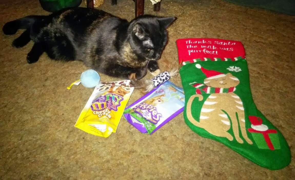 a cats meow toy it took mommy forever to put it together - How To Wrap A Cat For Christmas