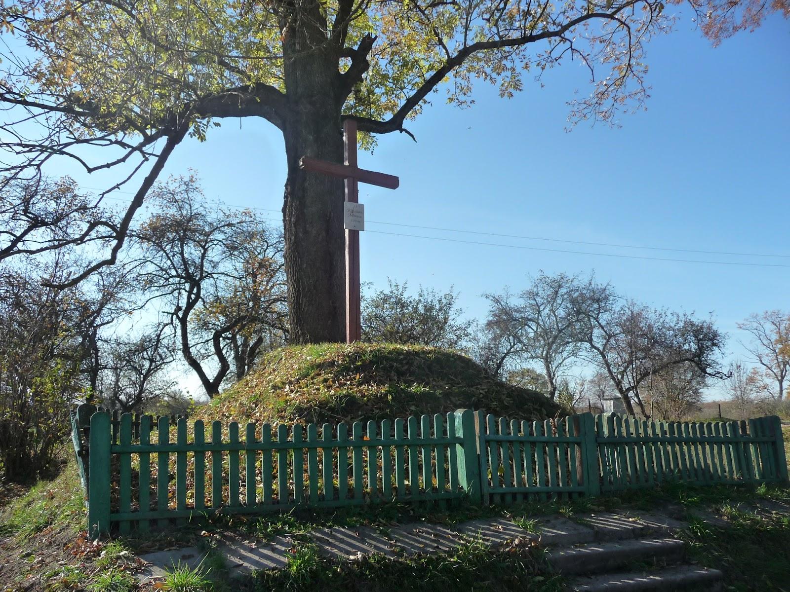Добрівляни Дрогобицького району. Хрест на символічній козацькій могилі