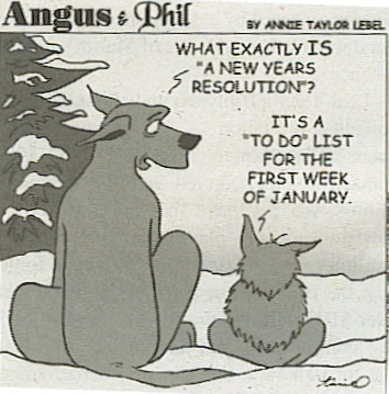 AttiRamailo (too much fun): Funny New Year Resolutions