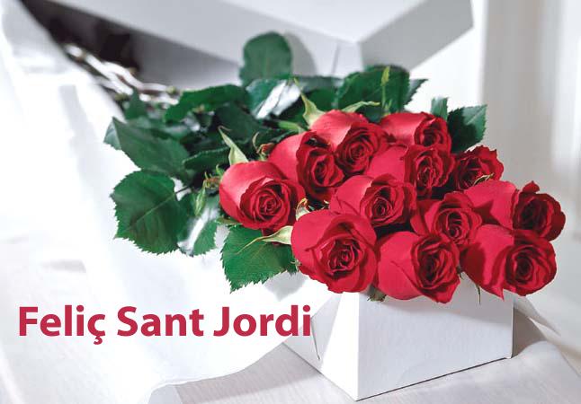 Fotografias rosas Sant Jordi - Fotografias y fotos para imprimir