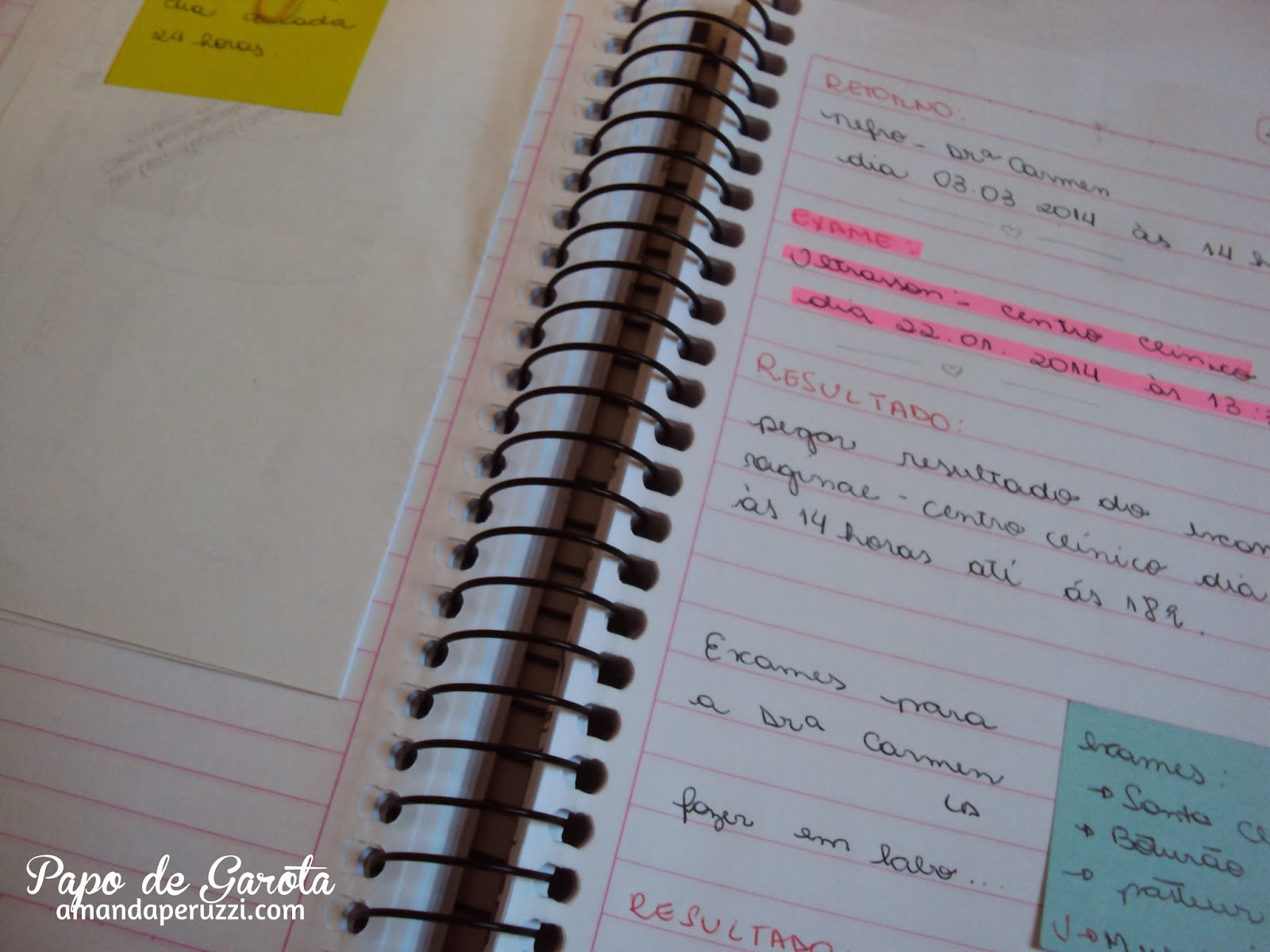 Caderno de Organização