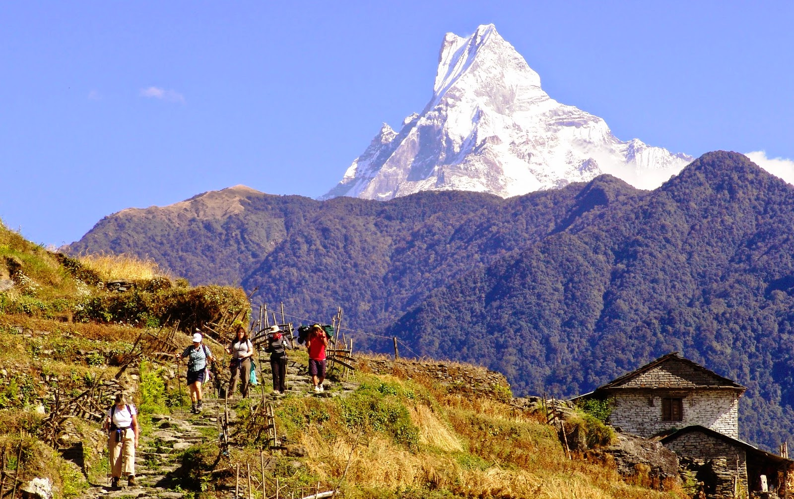 Tours Of Nepal Summer