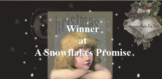 Winner at A Snowflakes Promise