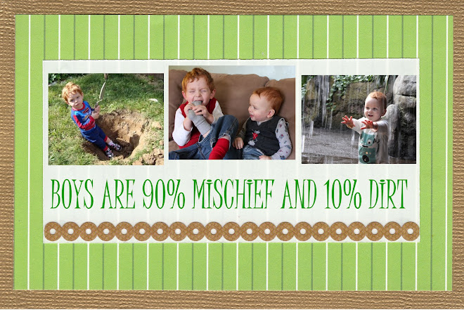 Boys are 90% Mischief and 10% Dirt