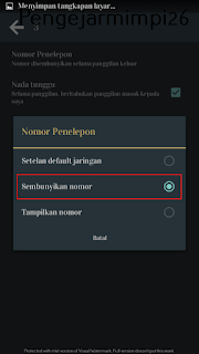 Image Tutorial Private Number