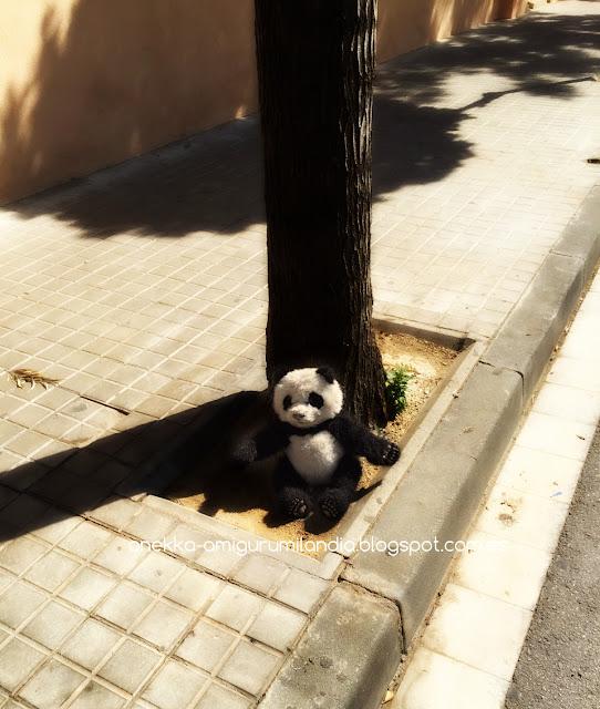 oso panda abandonado en la calle