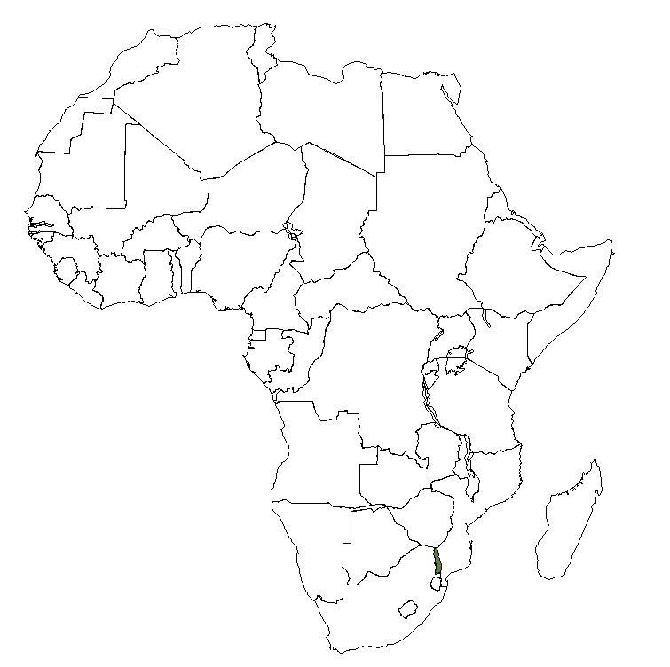 Dwg Africa-plano básico