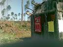 cabane Landaise