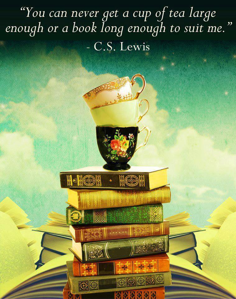 Τα βιβλία δεν είναι ποτέ αρκετά για τους βιβλιόφιλους!