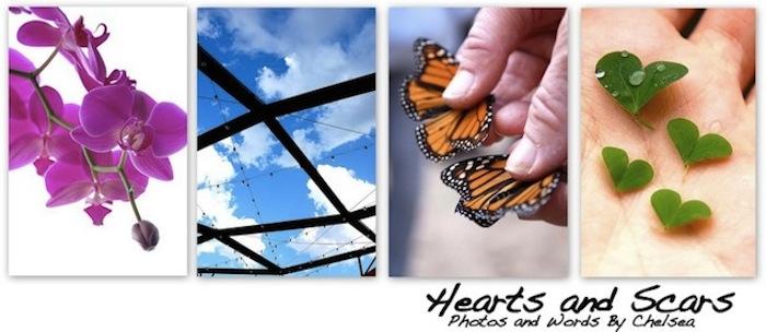 Hearts & Scars