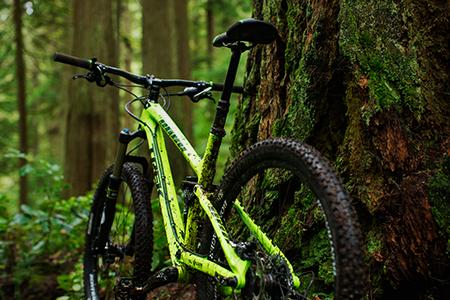 2015 Trek Fuel EX 9.8 29