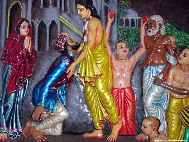 Why do Hindus Worship Cows - Chaitanya Mahaprabhu and Muslim Chand Kazi