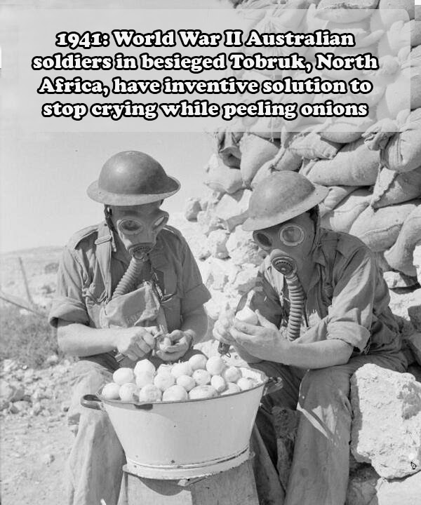 Peeling Onions on War fronts