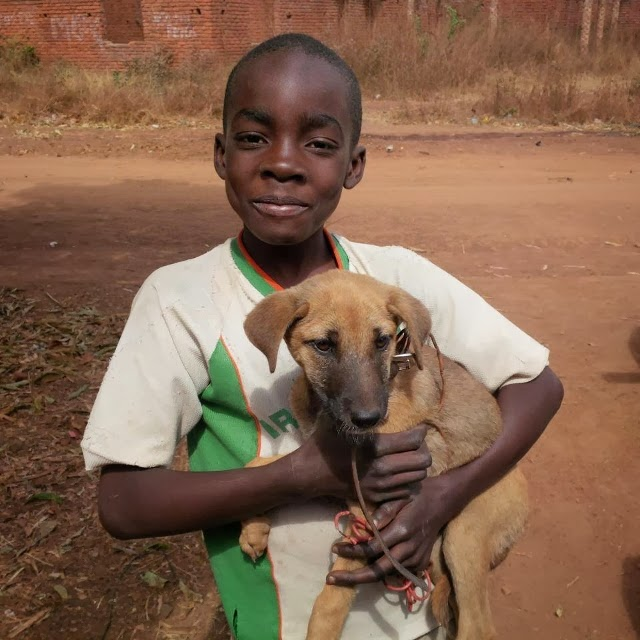 Lovely little boy and his dog!