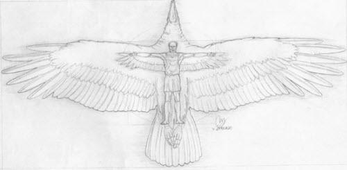 Argentavis Magnificens: El ave más grande de la historia