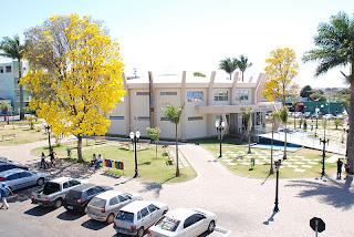 Foto da prefeitura de Cristalina, com seus ipês floridos