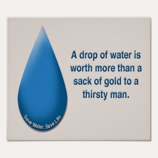 the importance of saving water The importance of water conservation cannot be stressed enough save our water water is the fuel of life plants, animals and humans cannot function without it water.