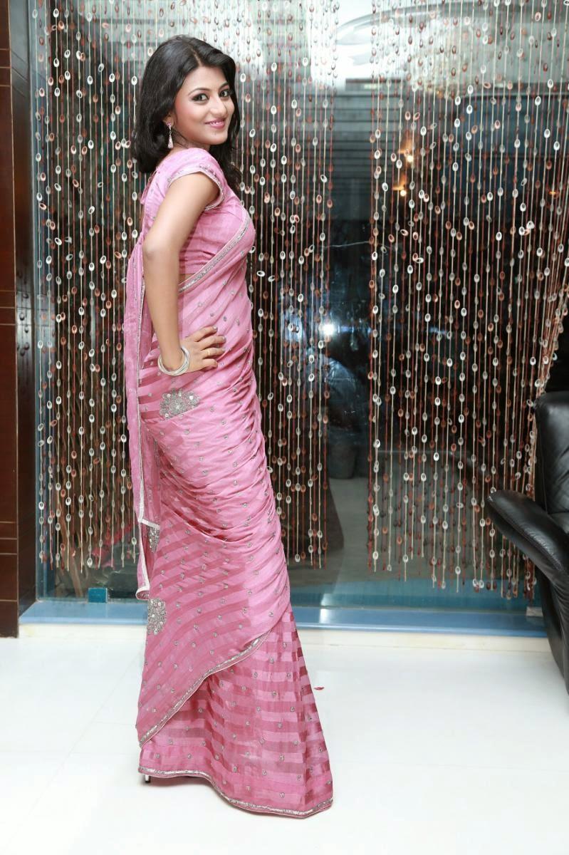 silver glittering saree