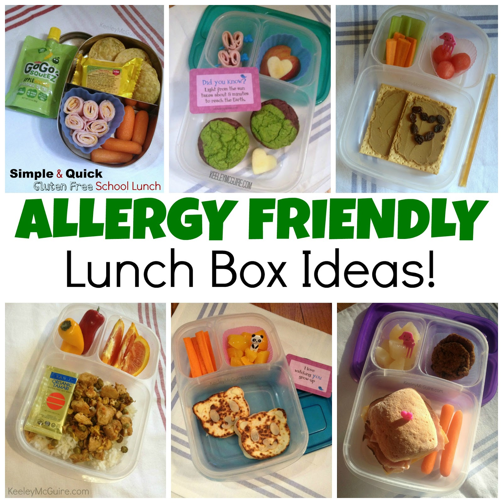Gluten free allergy friendly lunch made easy allergy for School lunch ideas