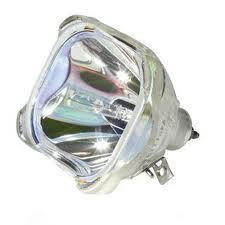 lampu infocus murah