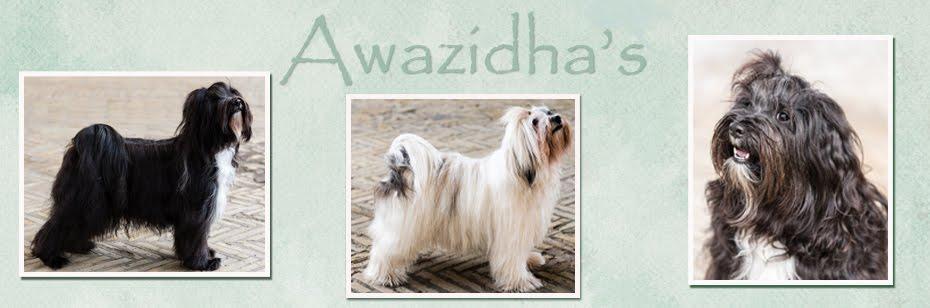 Awazidhas
