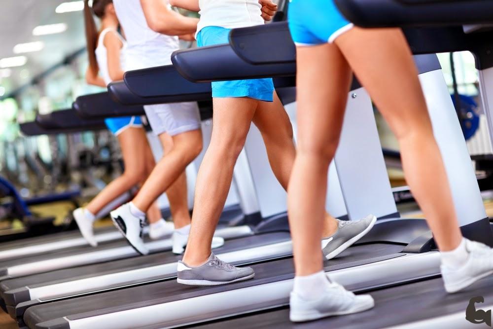 como eliminar la grasa del abdomen sin perder masa muscular
