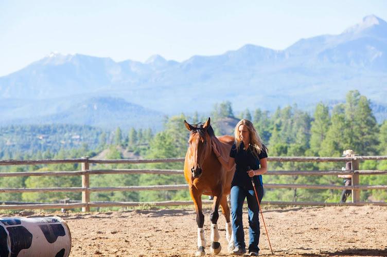 Samantha Thorning Horsemanship