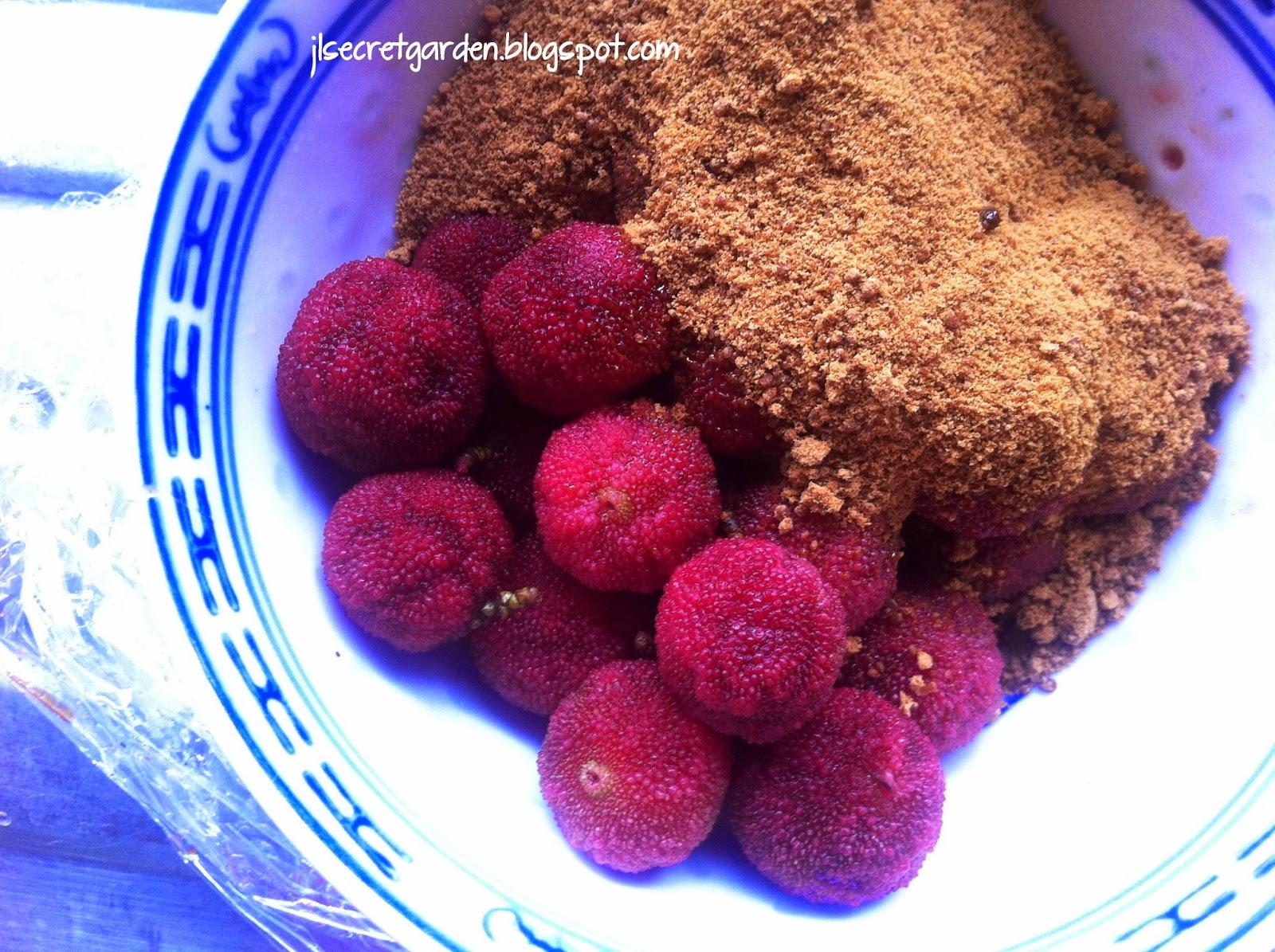 楊梅 黑糖 Chinese Bayberry Dark Brown Sugar