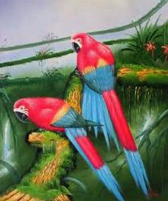 pintura-de-aves
