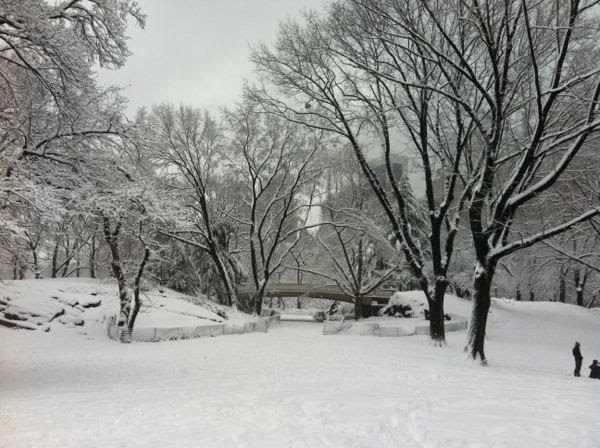 Snow in Central Park, Winter