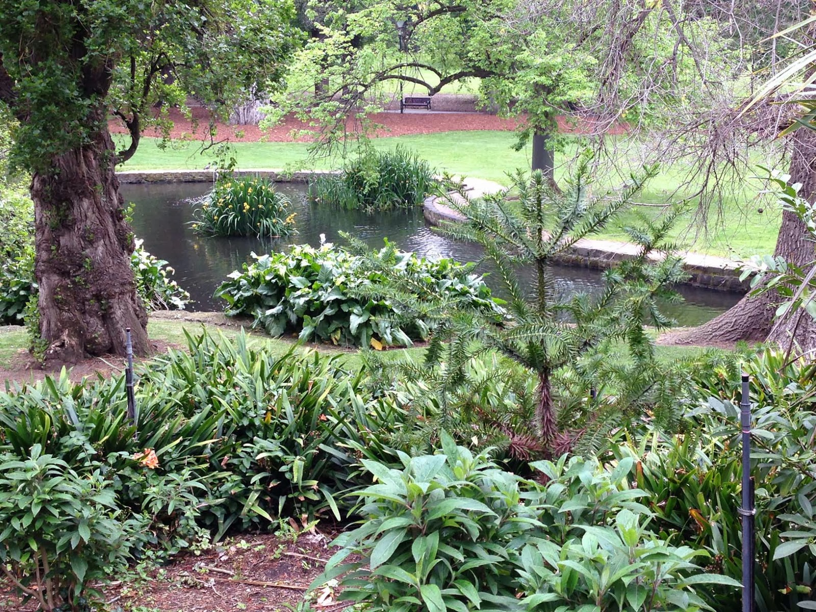 Running routes melbourne fitzroy gardens running route for Garden pond melbourne