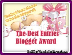 The Best Entries Blogger Award