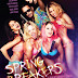 Spring Breakers 2013 RC BRRip CAM AUDiO XViD-MORS