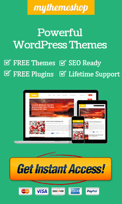 Want to boost your blog traffic? Grab this theme