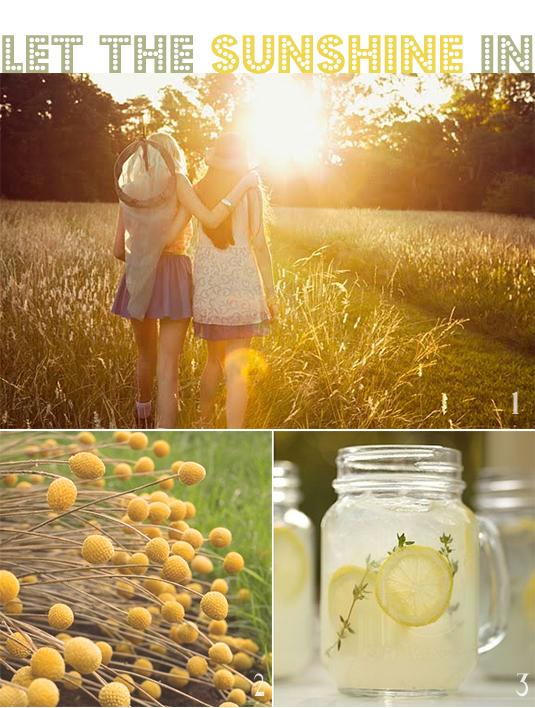 sunshine photographs