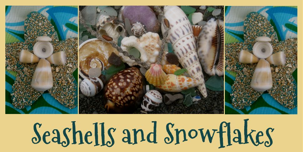 Seashells and Snowflakes