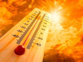 Temperatura Alta - Um Asno