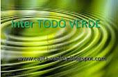 INTER TODO VERDE