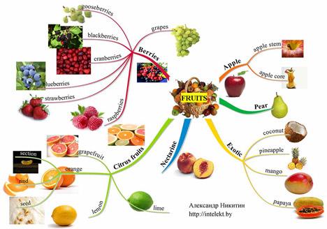 Интеллект-карта Fruits Александра Никитина