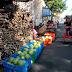 Mercado Oriental ya oferta caña de azúcar