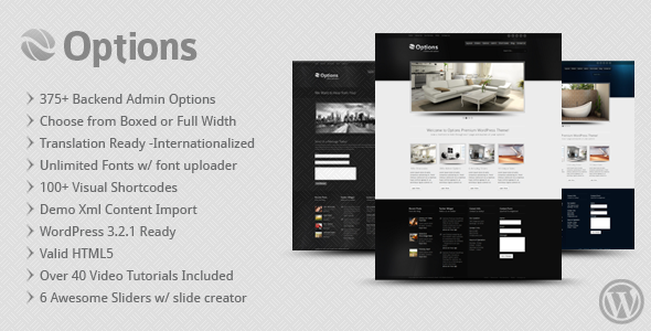 Image for Options – Business / Corporate Theme by ThemeForest