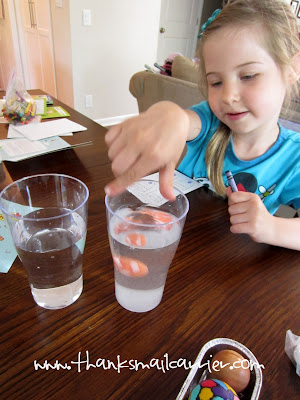 kids water experiment