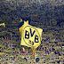 Borussia Dortmund terá o 3º maior público da história da Liga Europa