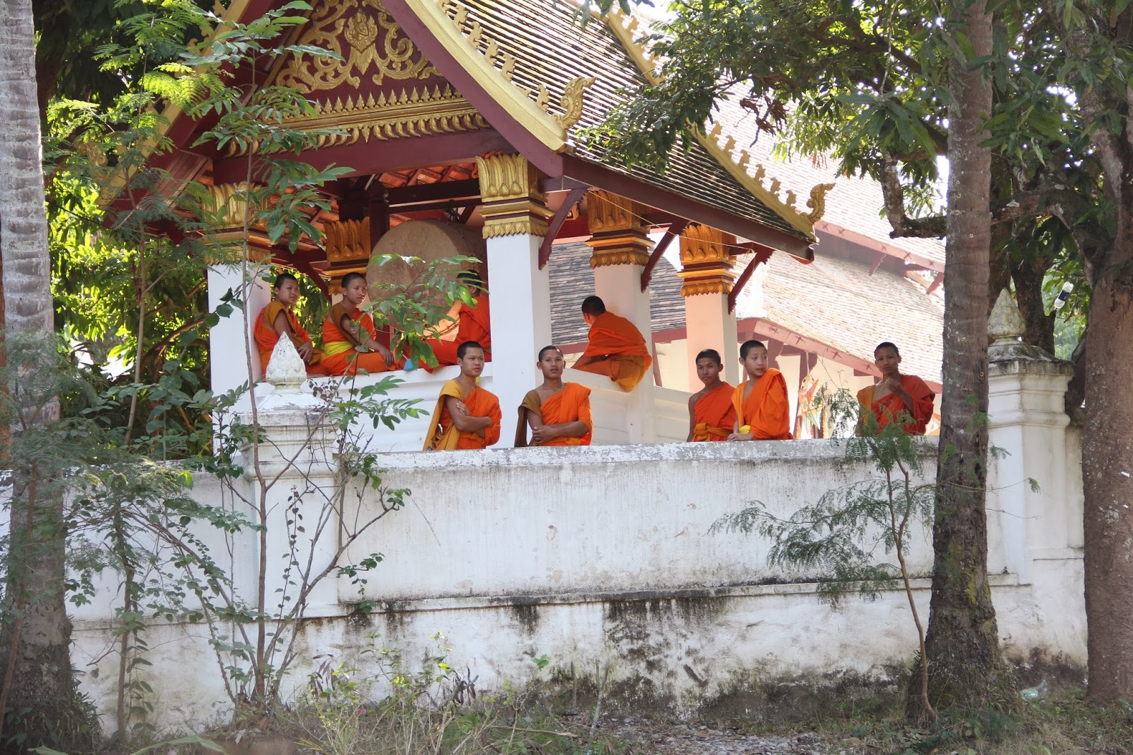 Saffron-robed young monks in Luang Prabang at one of the many monastery/schools.