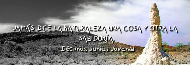 Jamás dice una cosa la naturaleza y otra la sabiduría.