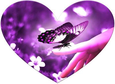 35_corazon_mariposa